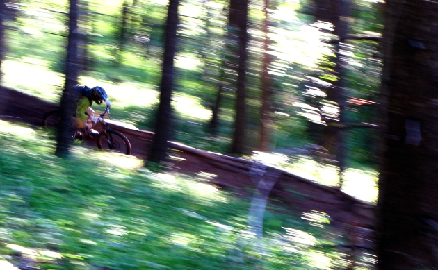 Berms on the corners means really fast riding... as Bee shows here