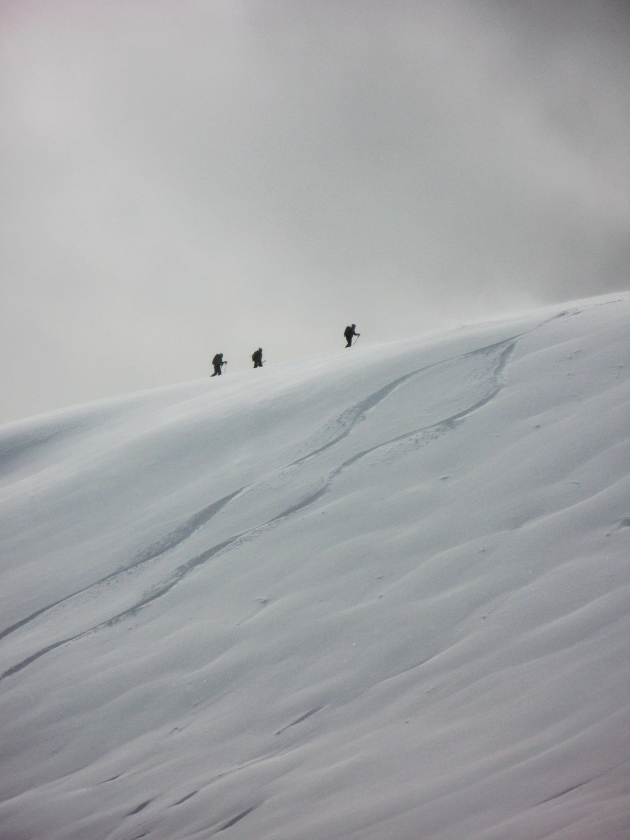 Approaching the top of Edelweiss Bowl