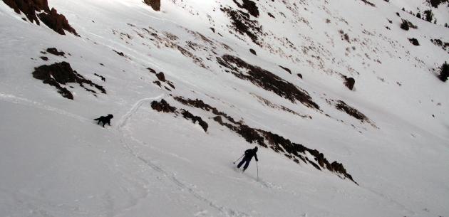Sonja Lercher skiing Carson Pass, California
