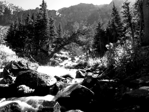A poor attempt at black and white of a creek just below treeline.